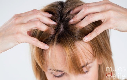 masajista capilar contra la caída del cabello  (a domicilio)