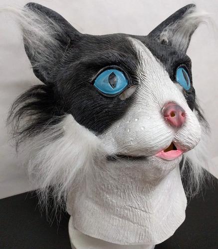 mascara latex gato adulto gatito animal halloween ragdoll