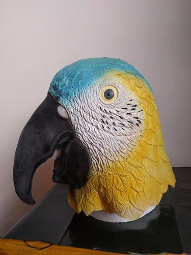 mascara latex guacamayo loro aves animales disfraz cotorra