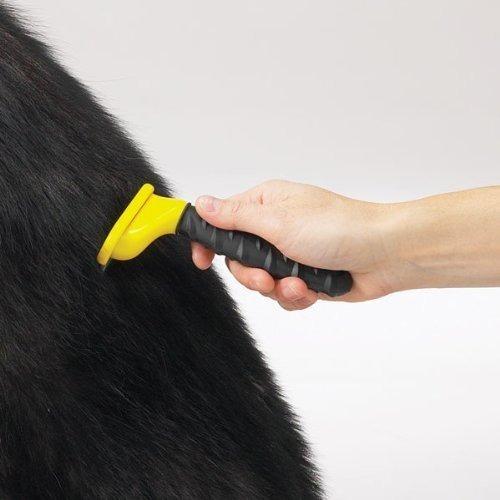mascota perro cepillo