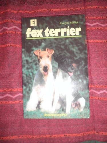 mascotas - el fox terrier - evelyn miller