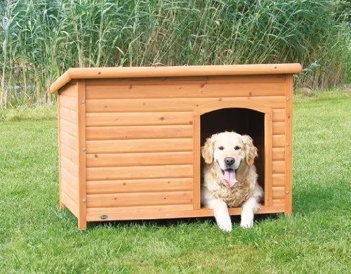 mascotas extra grande casa perros