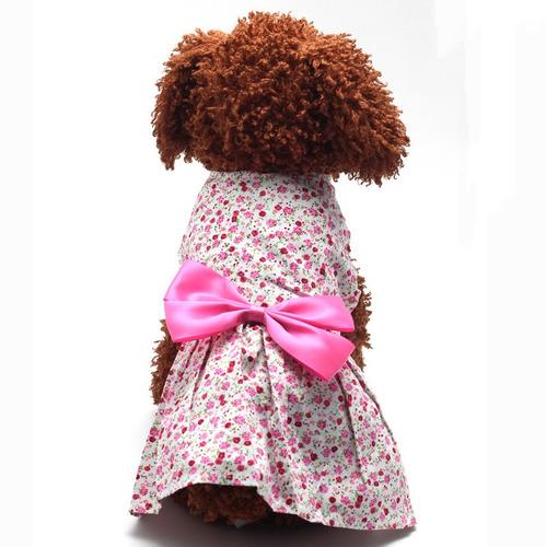 mascotas perro ropa