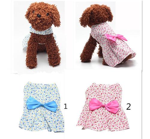 mascotas perro vestido