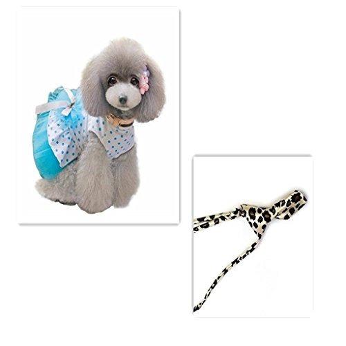mascotas vestido perro,