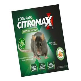 Mata Ratos Camundongos (gabiru) Não É Veneno / 24 Cartelas
