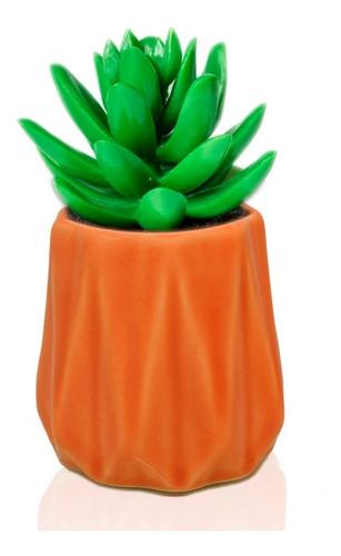 mate maceta cerámica retro cactus suculenta regalo original