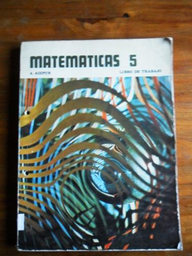 matematica 5 libro de trabajo a. aizpun usado