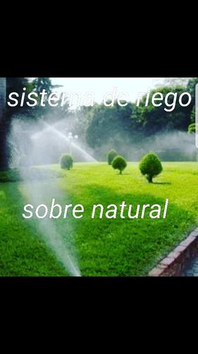 matenimiento de espacios verdes, sistema de riego,podas parq