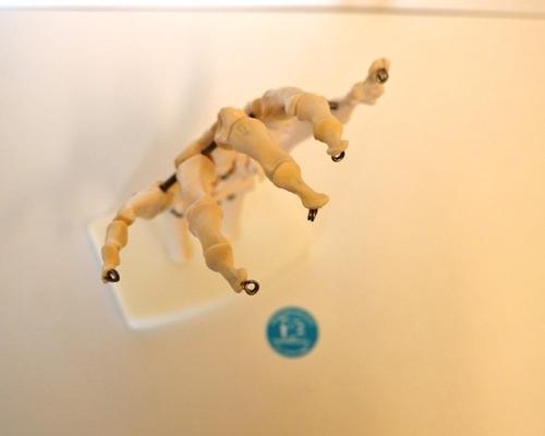 material didactico - modelo de mano esqueleto