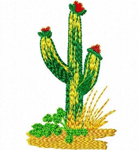 matriz bordado coleção deserto vivo