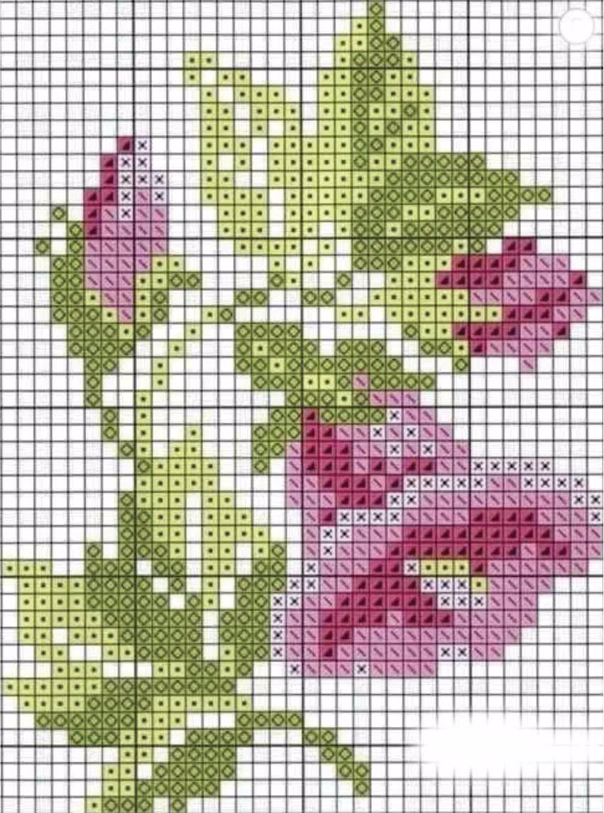 Matriz Bordado Ponto Cruz Flores Floral Copo De Leite C140