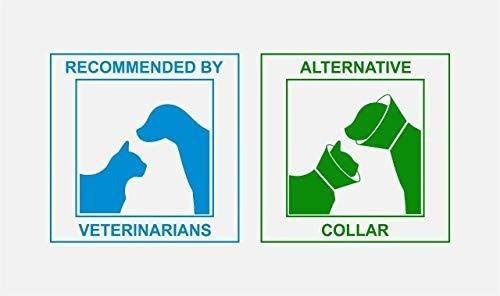 maxx cat medical pet care ropa e collar alternativo para her