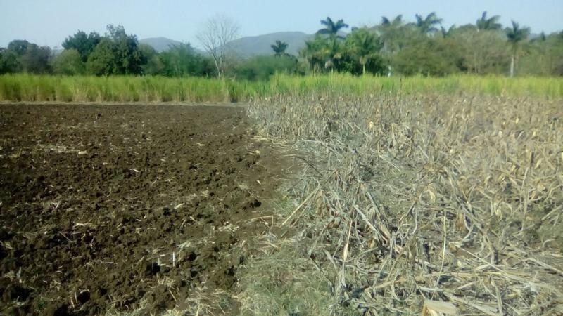 m&c venta terreno en el naranjo san luis potosí
