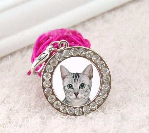 medallas de identificación para mascotas
