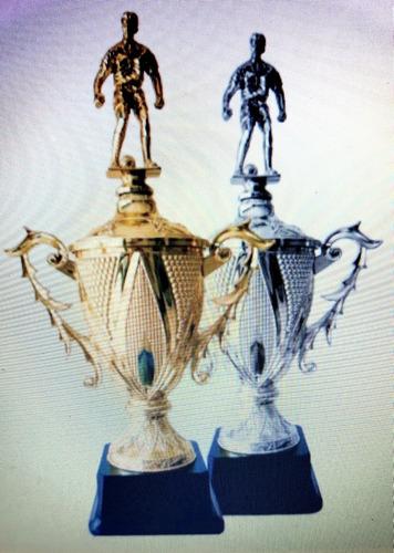 medallas y trofeos