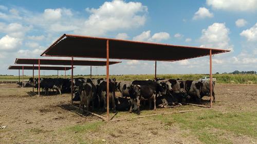 media sombra para vacas - financiacion hasta en 12 meses