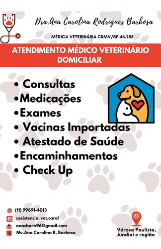 medica veterinária domiciliar