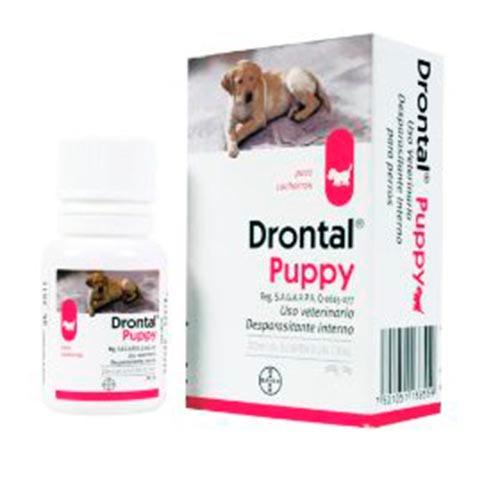 medicamento veterinario perro cachoro desparasitante +kota