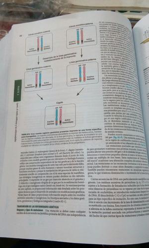 medicina interna de harrison 19va edición