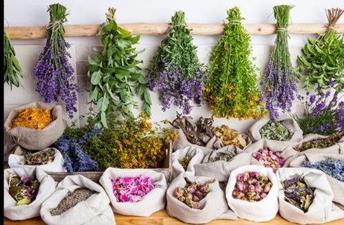 medicina natural  villarrica