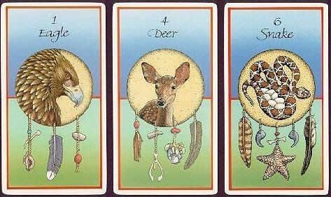 medicine cards, estas cartas y libro están en ingles