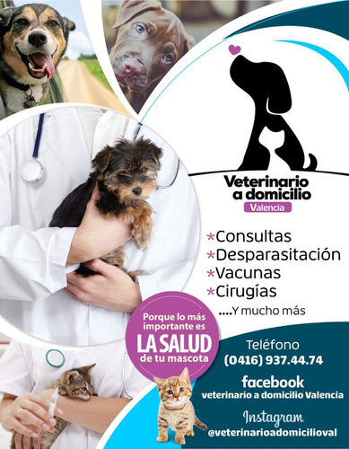 médico veterinario a domicilio