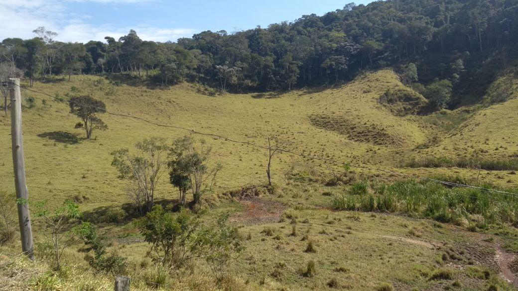 mega fazendão de gado em paraibuna!!!