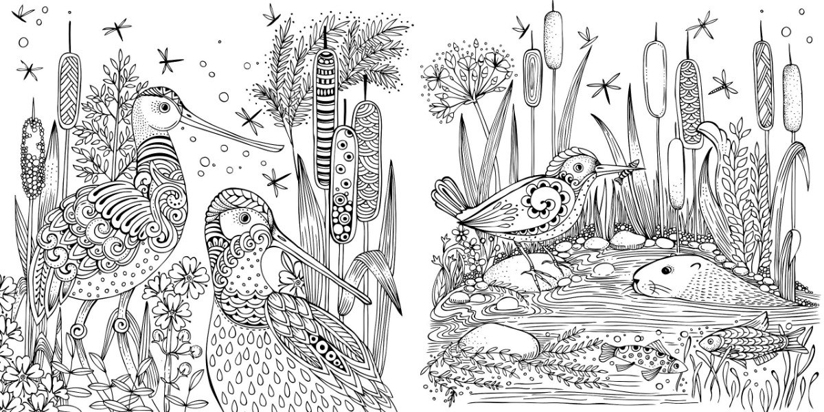 Mein Fruehlingsspaziergang By Rita Berman Livro De Colorir R