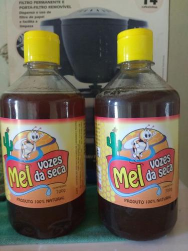 mel de abelha 700g (cooperativa de apicultores)