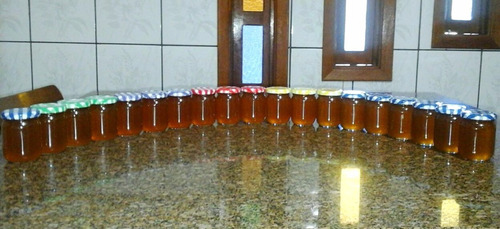 mel de jataí-  100% puro, safra 2017  - 250g