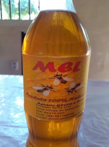 mel orgânico de abelhas africanizadas 100% puro.