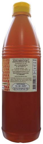 mel puro de abelha europa - embalagem 1 litro (1,4 kg)