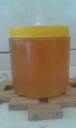 mel puro florada laranjeira ,eucalipto e sivestre 1kg