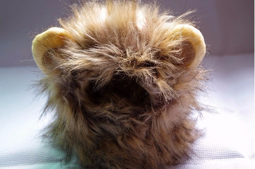 melena peluca bufanda disfraz para mascota perro o gato café