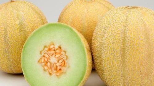 melón en pulpa congelado - 1 kg