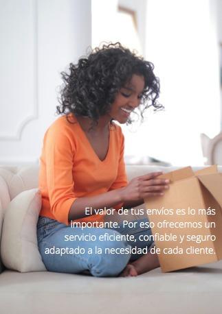 mensajeria - encomiendas - comisionista - logistica