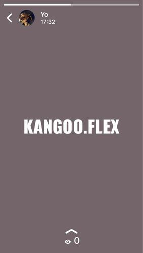 mensajería flex único servicio a empresas , confiabilidad