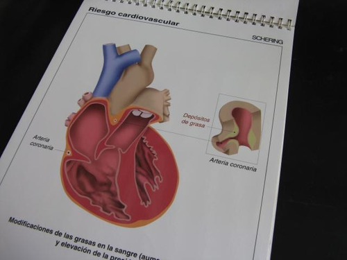 mercurio peruano:  laminas anatomia ginecologia 32p  l86