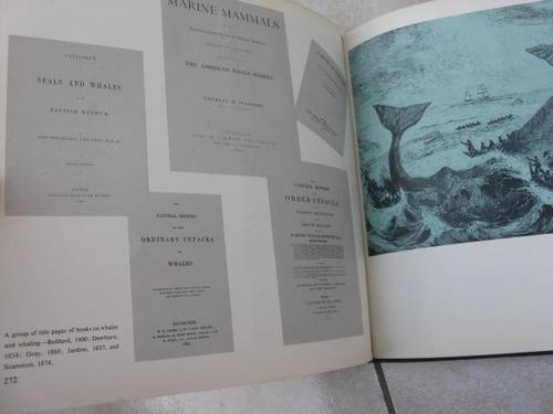 mercurio peruano: libro antiguo de  ballenas l32
