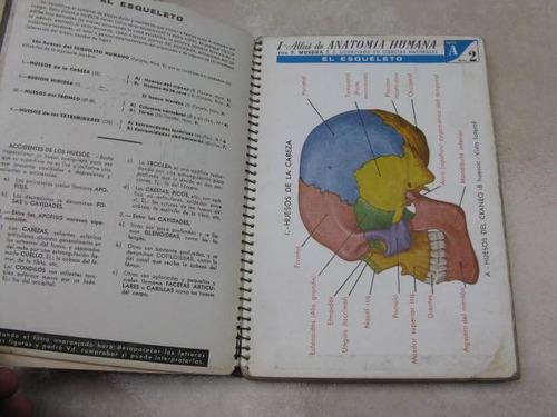 mercurio peruano: libro  atlas de anatomia jover l30