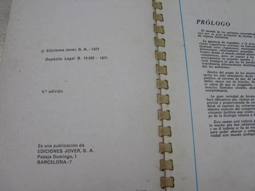 mercurio peruano: libro  atlas zoologia invertebra jover l30