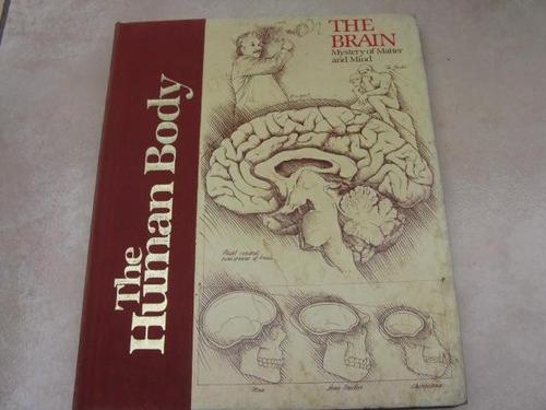 mercurio peruano: libro cuerpo humano el cerebro l38