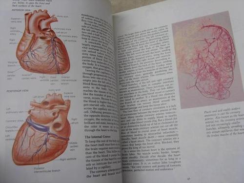 mercurio peruano: libro cuerpo humano el corazon l38