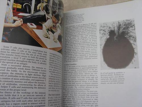 mercurio peruano: libro cuerpo humano la sangre l38