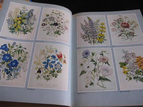 mercurio peruano: libro flores perennials time life  l64