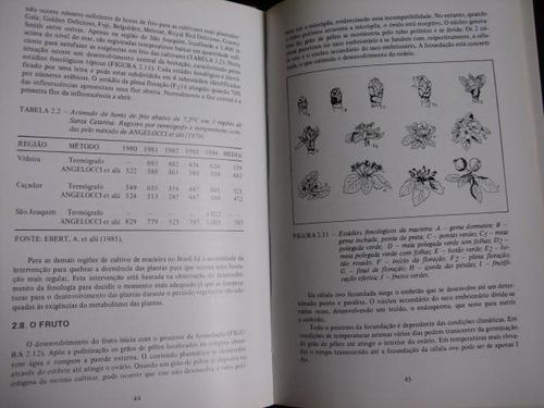 mercurio peruano: libro manual cultivo manzanas huerto l67