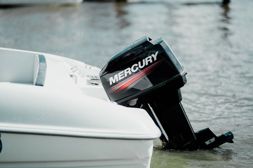 mercury 60 hp 2t