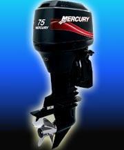 mercury 75 hp elpto 0hs. 2020
