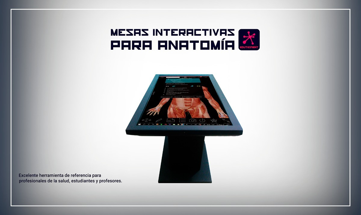 Moderno Herramientas De Estudio De Anatomía Y Fisiología Adorno ...